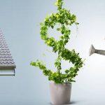 Foto da postagem Linhas de financiamento para o agronegócio – mais bancos para se beneficiar